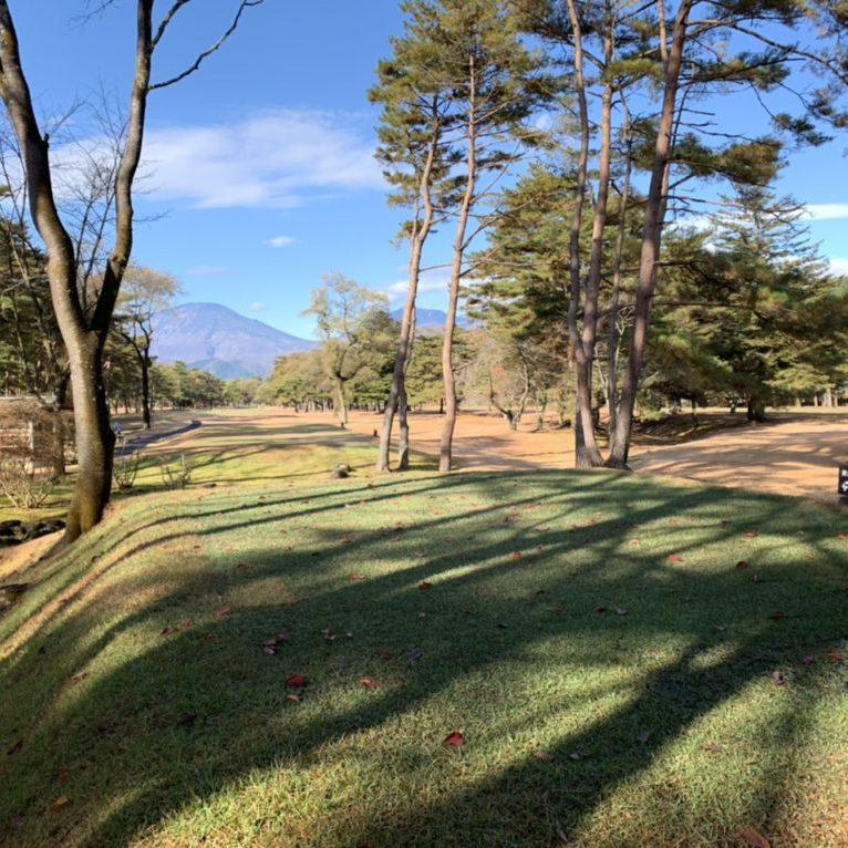 2019.11.25 周りの木の影響で日当たり不足が心配です